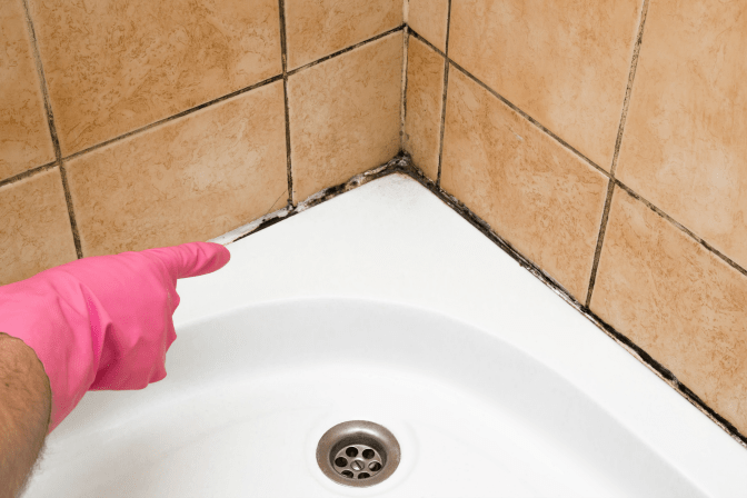 How to Charge for a Hoarding Job, Mold on Grout